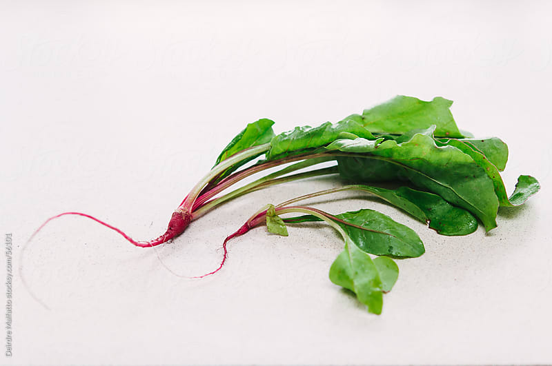Freshly Picked Baby Beets and Greens by Deirdre Malfatto for Stocksy United