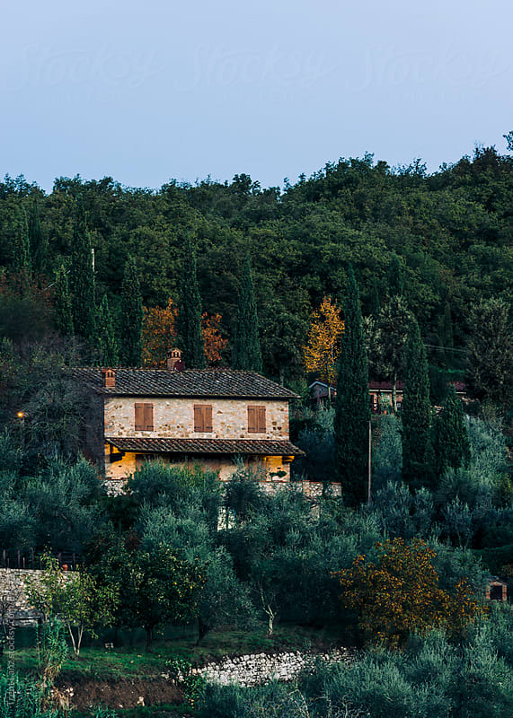 View on Italian residential villa surrounded by trees by Trent Lanz for Stocksy United