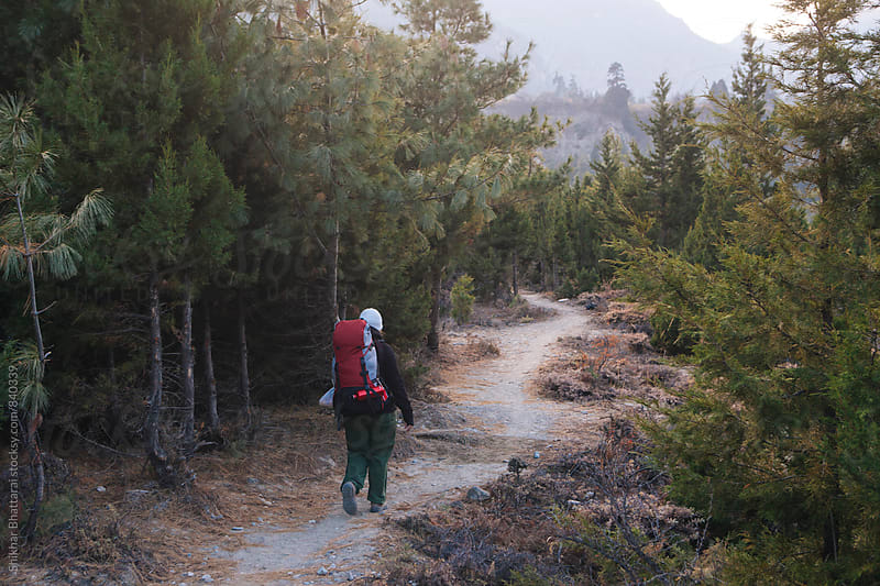 A young woman trekking through a pine forest in the himalayas. by Shikhar Bhattarai for Stocksy United