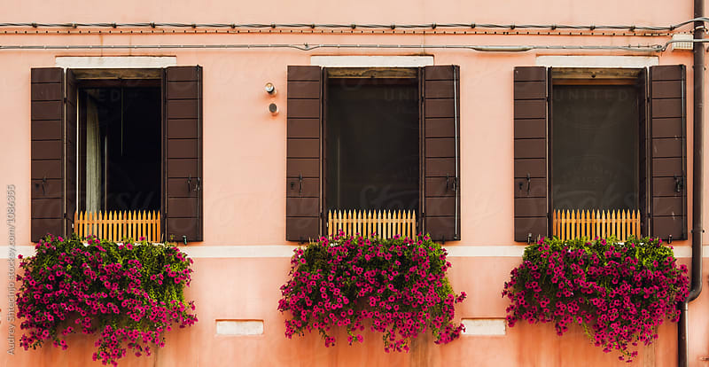 Facade detail/3 windows wide opened with flowers. by Marko Milanovic for Stocksy United