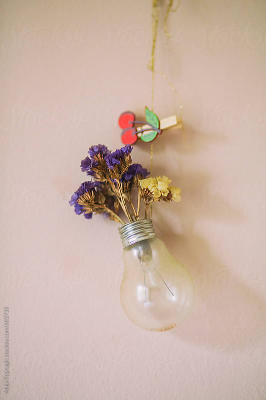 Lightbulb with flowers by Maja Topcagic for Stocksy United