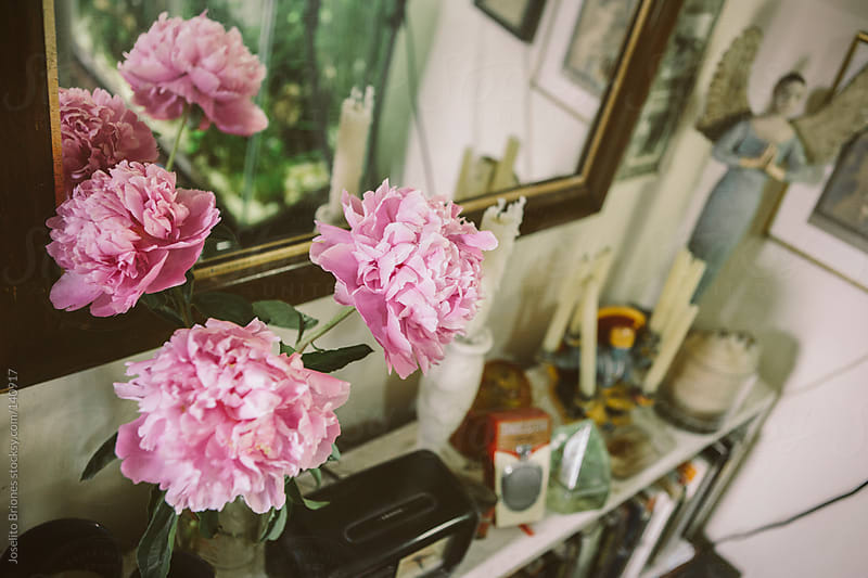 Pink Peony Flowers on Old Shelf with Mirror and Antiques by Joselito Briones for Stocksy United