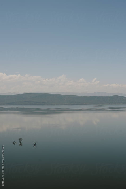 Lake Nakuru by Beth Grimes for Stocksy United