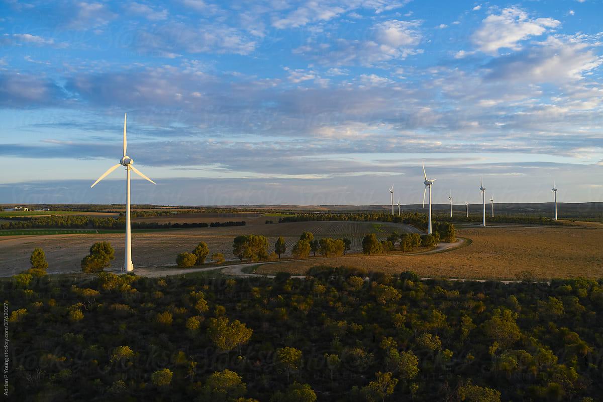 Wind farm in the evening sunlight
