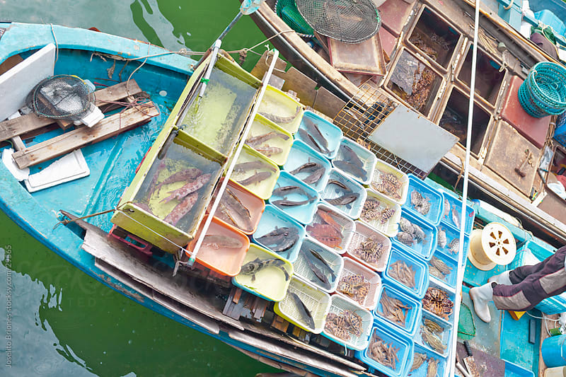 Floating Fish Market in Sai Kung, Hong Kong by Joselito Briones for Stocksy United