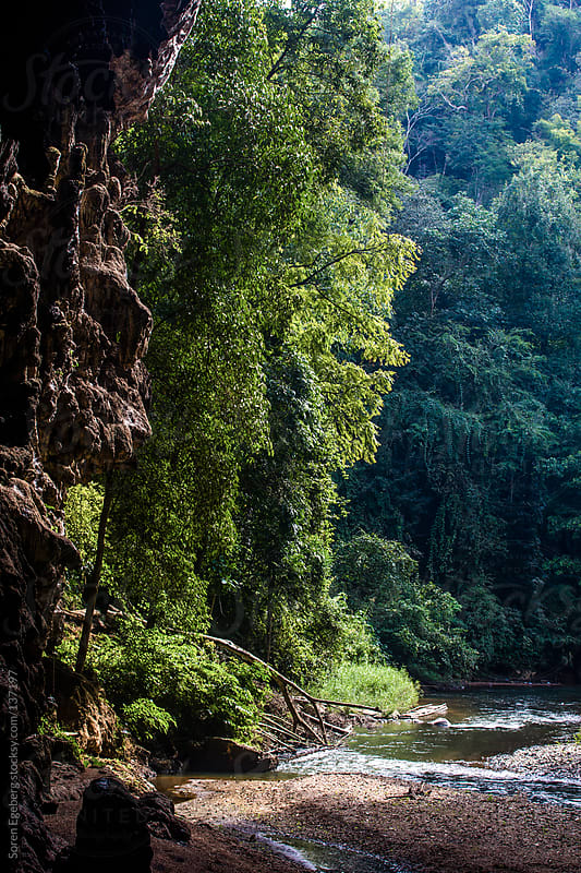 Small river flowing through green dense jungle in Thailand. by Soren Egeberg for Stocksy United