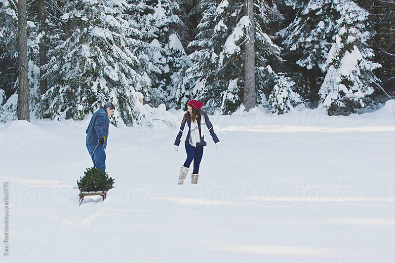 couple pull sled with Christmas tree in mountains by Tana Teel for Stocksy United