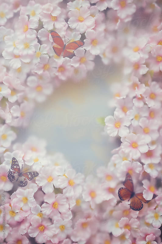 Cherry blossom texture and butterfly by Alita Ong for Stocksy United