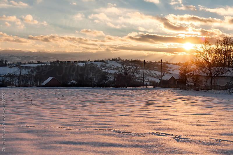 The end of the winter day. Amazing sunset above the field by Dimitrije Tanaskovic for Stocksy United