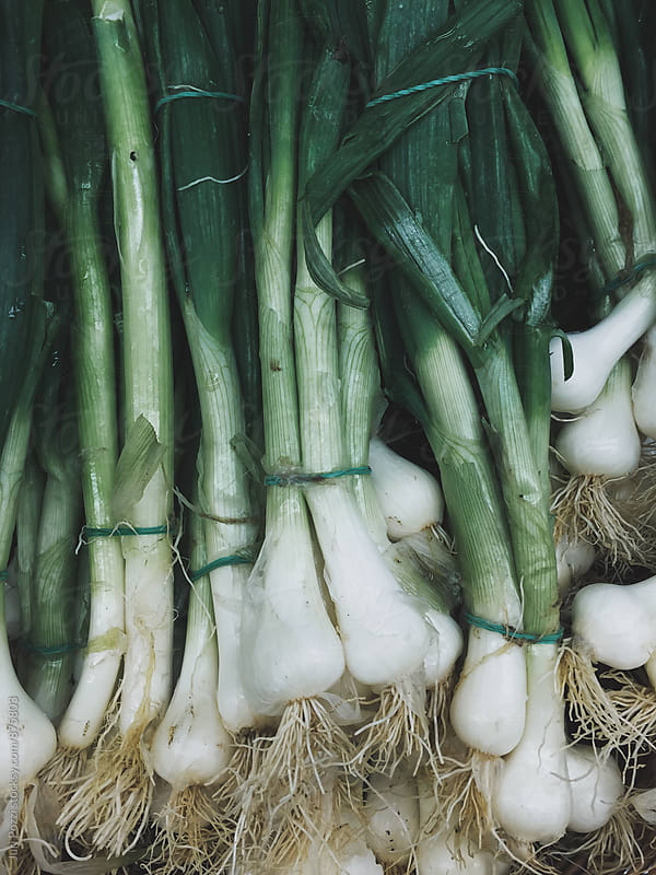 spring onions by Juri Pozzi for Stocksy United