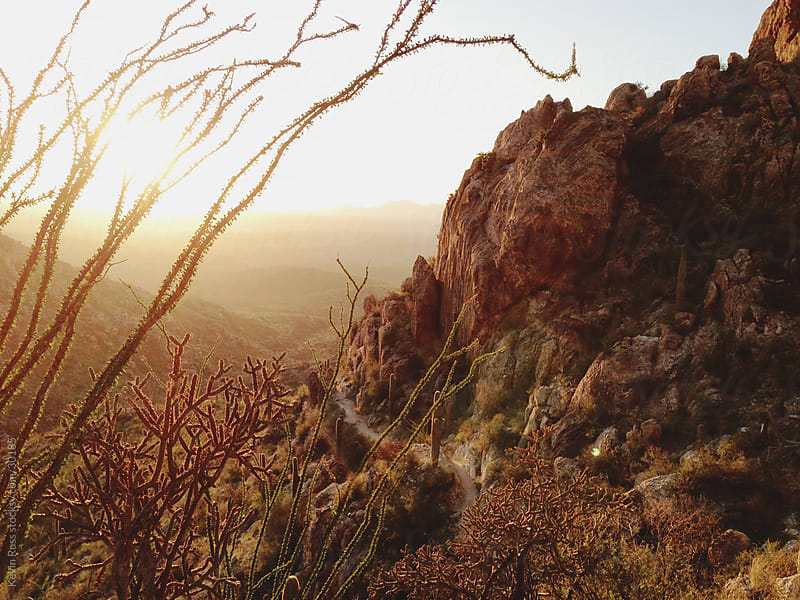 Sunset Desert Mountain Trail by Kevin Russ for Stocksy United