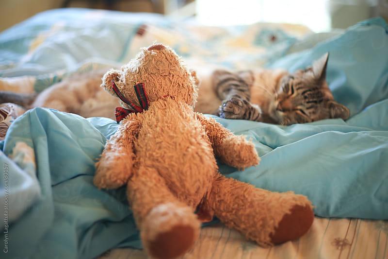 Siamese kitty sleeping on a young girl's bed next to a teddy bear by Carolyn Lagattuta for Stocksy United
