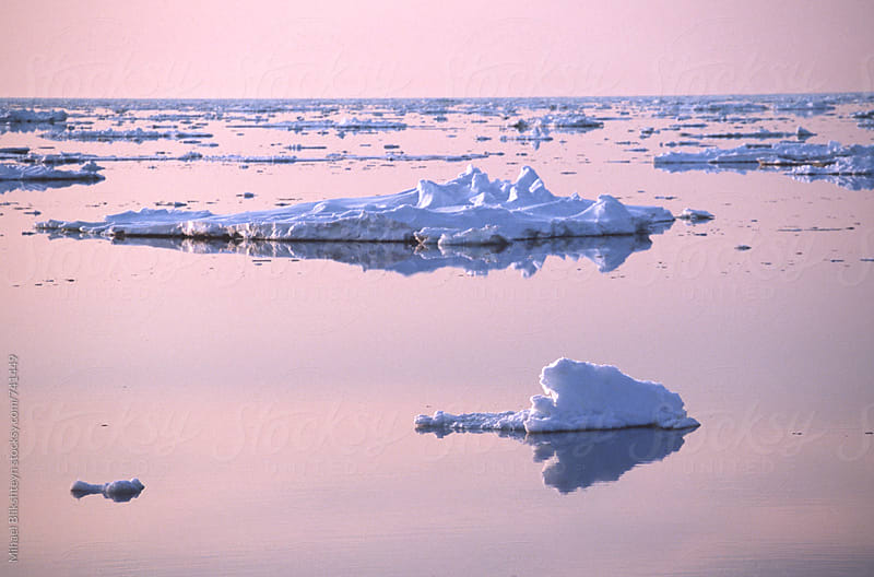 Purple sunset light reflecting in ocean with small ice floats by Mihael Blikshteyn for Stocksy United