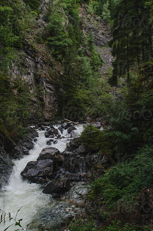 River flowing through a mountain gorge by Neil Warburton for Stocksy United