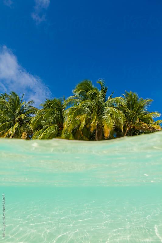 Maldivian beach and shore by Felix Hug for Stocksy United