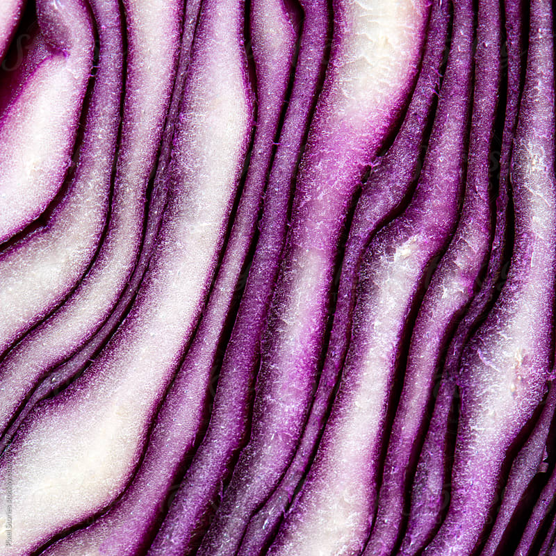 Red cabbage close-up by Pixel Stories for Stocksy United