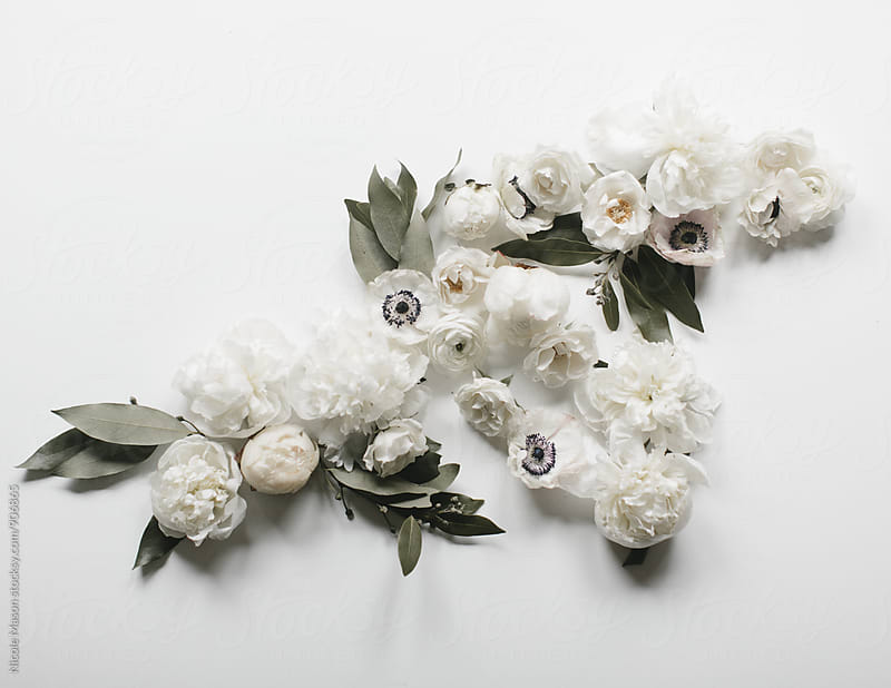 White flowers arranged on white background by Nicole Mason for Stocksy United