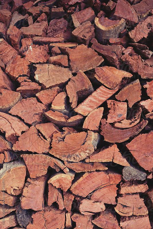 split logs, ready for winter by Gillian Vann for Stocksy United