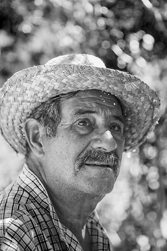 Portrait of a Senior Farmer in the Vineyard by Victor Torres for Stocksy United