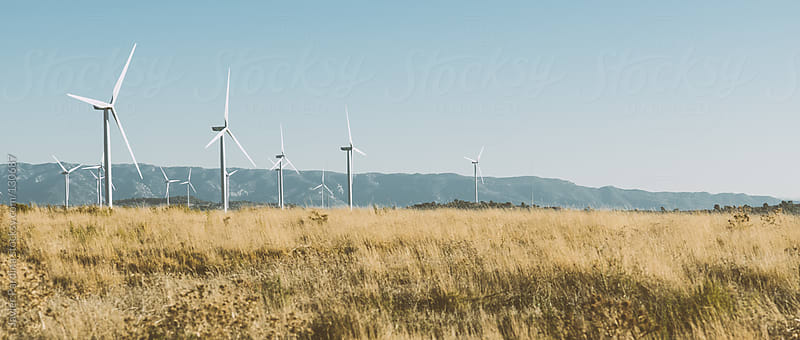 landscape with windmills by Javier Pardina for Stocksy United