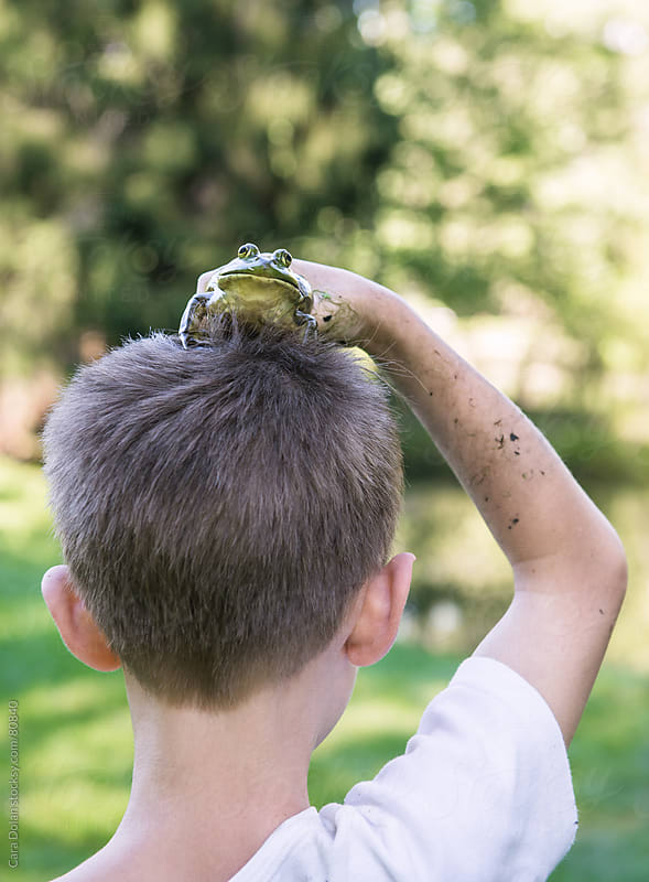 Boy has a frog on his head by Cara Dolan for Stocksy United