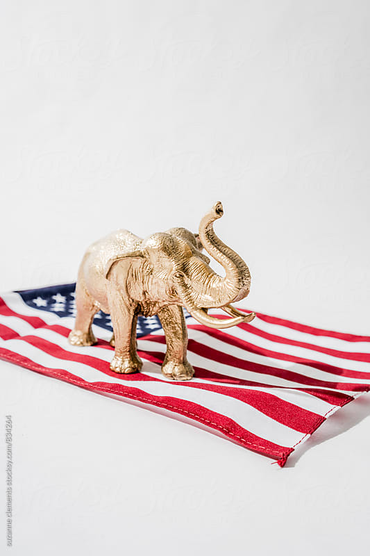 Republican Candidate Forerunner Dipped in Gold by suzanne clements for Stocksy United