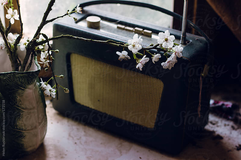 Vintage radio and blossom by Helen Rushbrook for Stocksy United