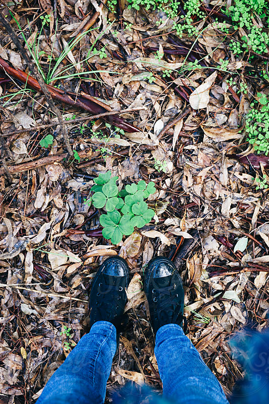 Looking down on feet standing on wet leaves and clover in nature - vertical by Jacqui Miller for Stocksy United