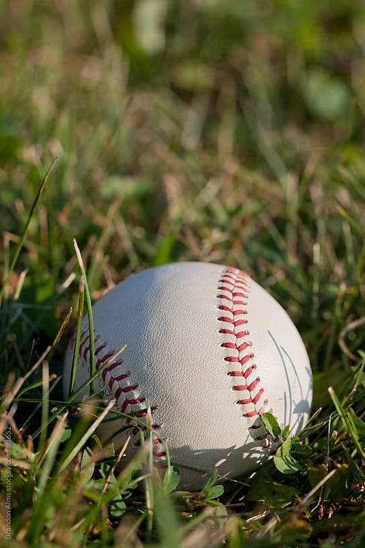 Baseball Closeup in Field of Grass by Brandon Alms for Stocksy United