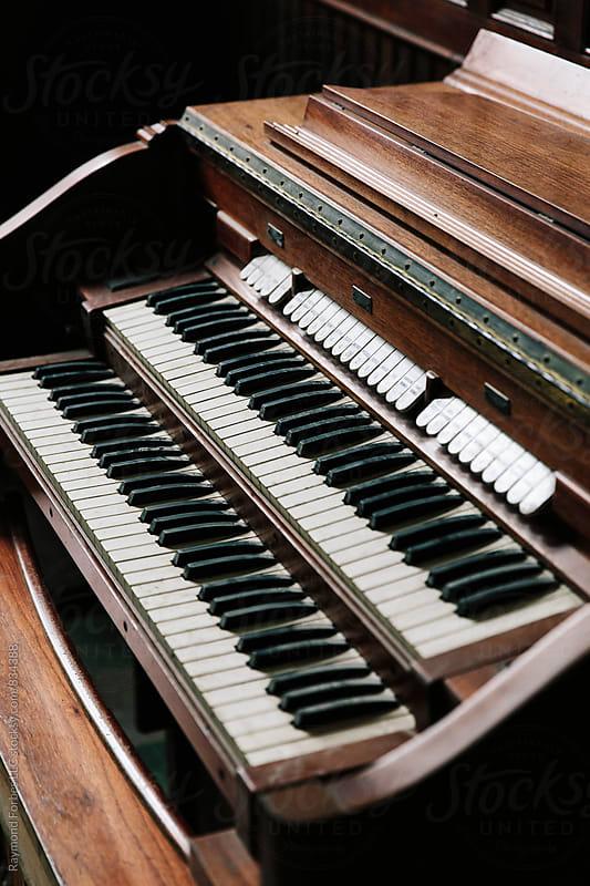 Organ  by Raymond Forbes LLC for Stocksy United