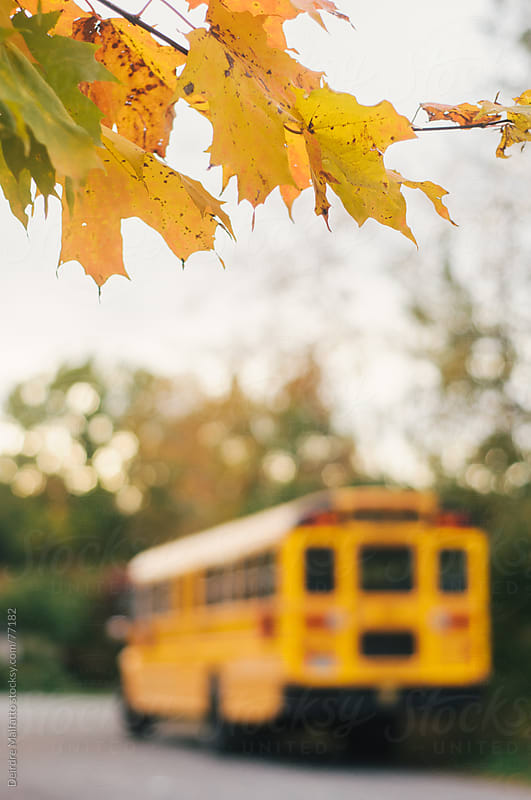 blurred yellow school bus on a country road in autumn by Deirdre Malfatto for Stocksy United