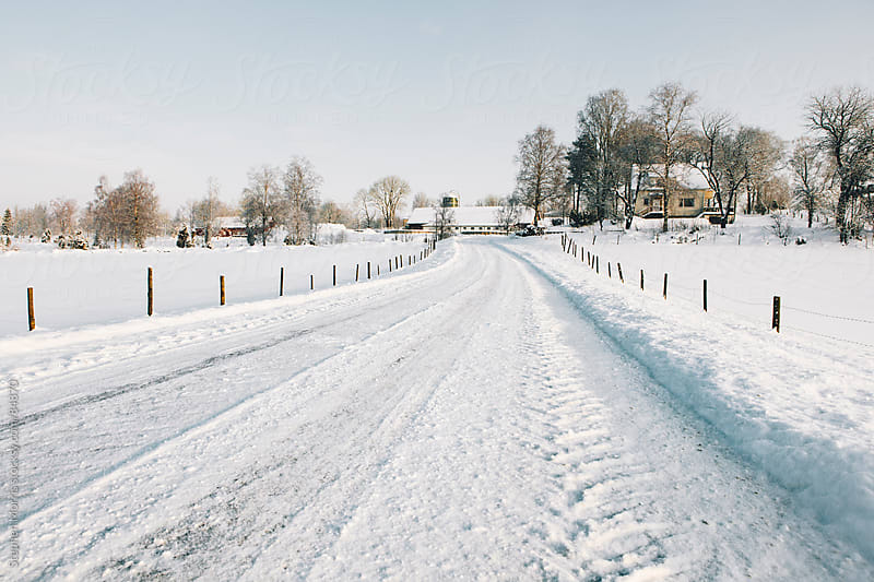 Empty Winter Road by Stephen Morris for Stocksy United