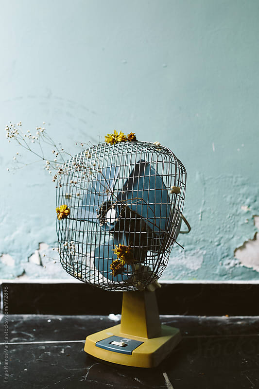 vintage fan by Thais Ramos Varela for Stocksy United