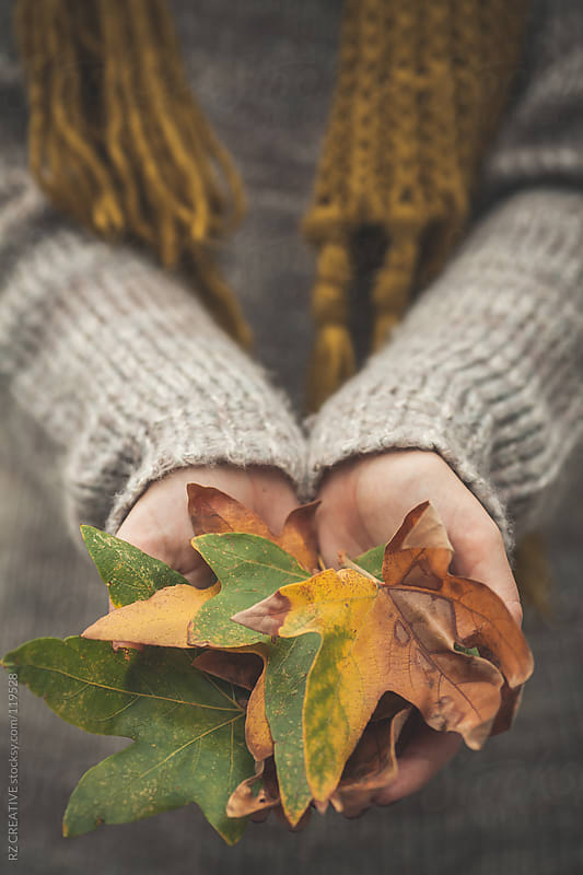 A woman wearing a sweater holding a handful of leaves. by RZ CREATIVE for Stocksy United