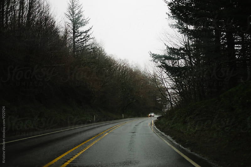 Rainy Wet Road Surrounded by Trees by Kristine Weilert for Stocksy United