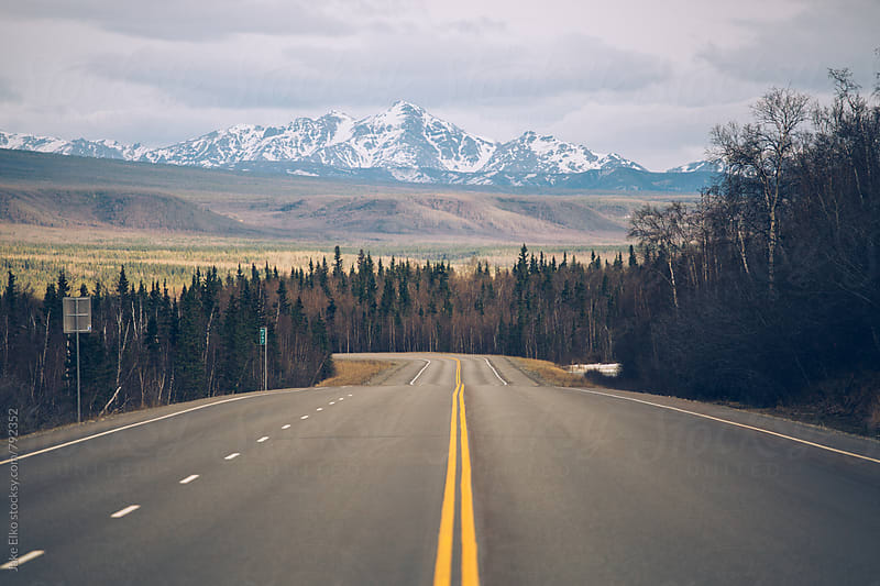 Road Near Denali by Jake Elko for Stocksy United