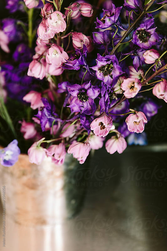 Delphinium flowers in a vintage silver champagne bucket by Helen Rushbrook for Stocksy United