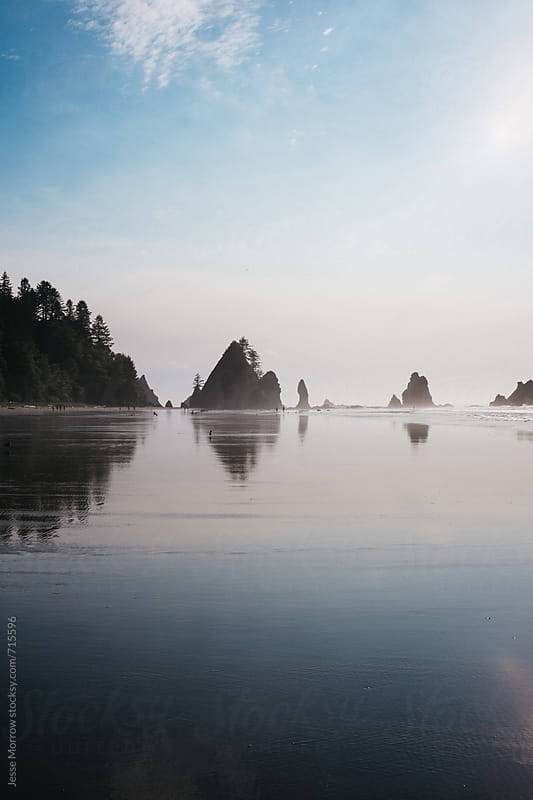 shi shi beach reflecting in water  by Jesse Morrow for Stocksy United