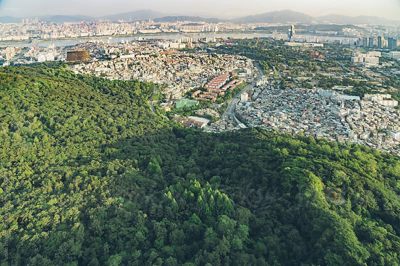panorama view of city with green trees by unite  images for Stocksy United