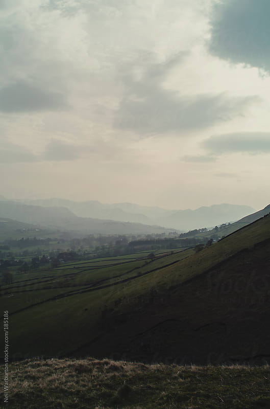 Afternoon Haze in the Counrtyside by Neil Warburton for Stocksy United
