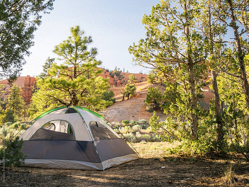 Tent set up among trees with red rock by Jeremy Pawlowski for Stocksy United