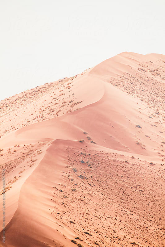 View from above of an untouched sand dune with grass on a bright day by Alejandro Moreno de Carlos for Stocksy United