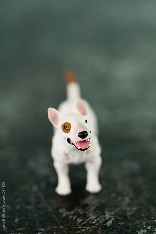 Close up of cute amstaff toy on rusty metal table by Laura Stolfi for Stocksy United