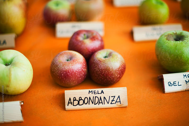 Rare cultivars of apples at botanical show in Italy by Laura Stolfi for Stocksy United