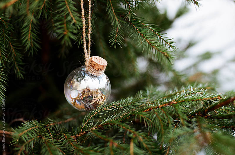 Glass ball on christmas tree by Lyuba Burakova for Stocksy United