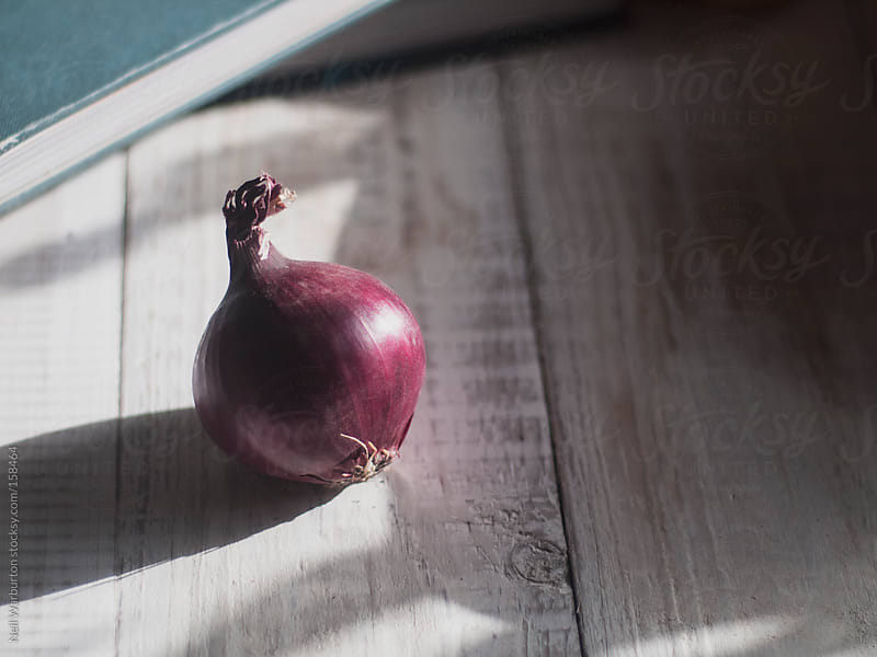 Small Red Onion by Neil Warburton for Stocksy United