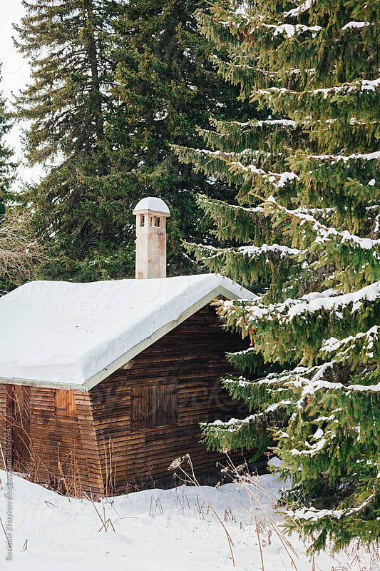 Snow covered wooden cabin in forest by Borislav Zhuykov for Stocksy United