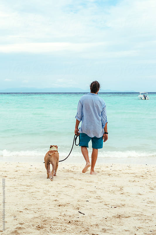 Young man walking a dog on the beach by Jovana Milanko for Stocksy United