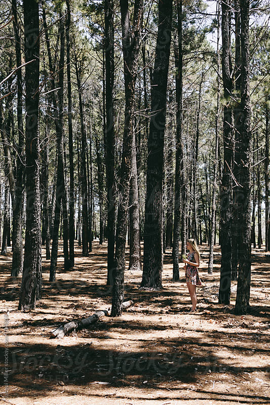 Girl standing amidst tall pine trees by Jacqui Miller for Stocksy United