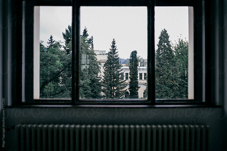 Landscape view thorough a window by Maja Topcagic for Stocksy United